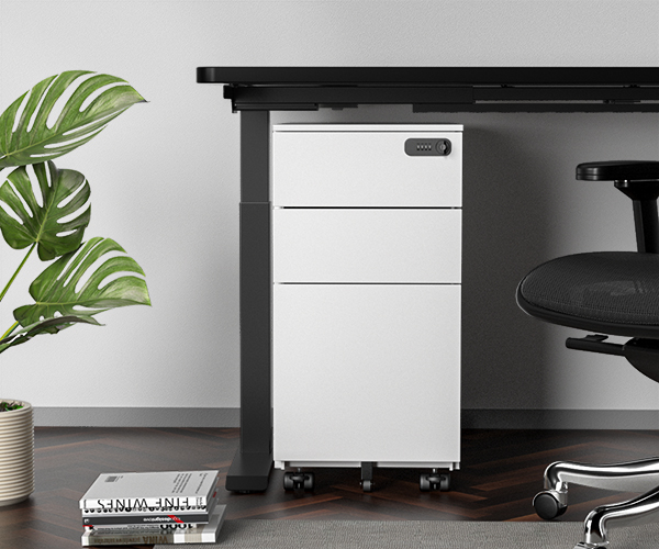 Easy Access and Secure Storage of SOLOS File Cabinet
