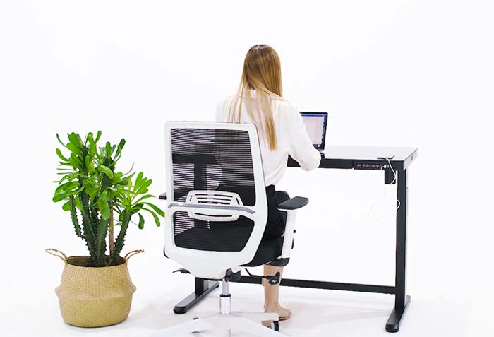 SOLOS Classic Ergonomic Chair